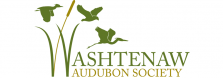 WashtenawAudubon final logo
